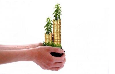 build cash value